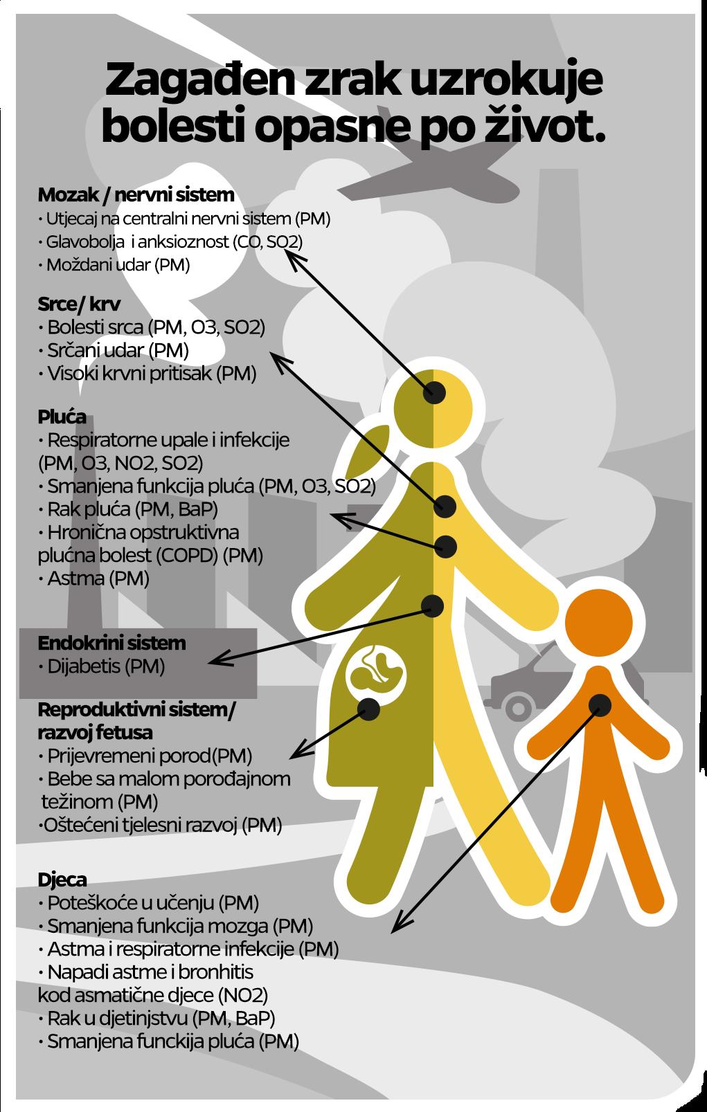 Uticaj na zdravlje pojedinačnih zagađujućih materija